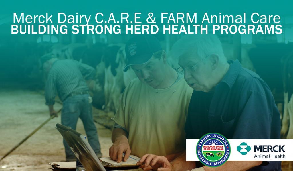 WEBINAR PREVIEW: Building Strong Herd Health Programs