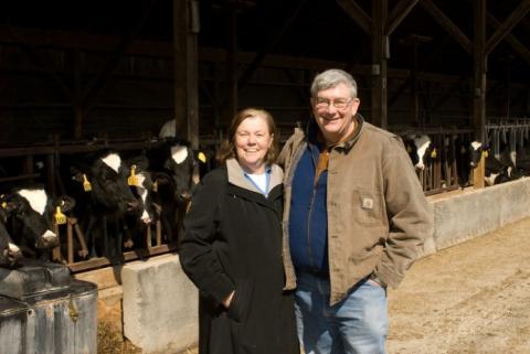 Sustainability on a Dairy Farm